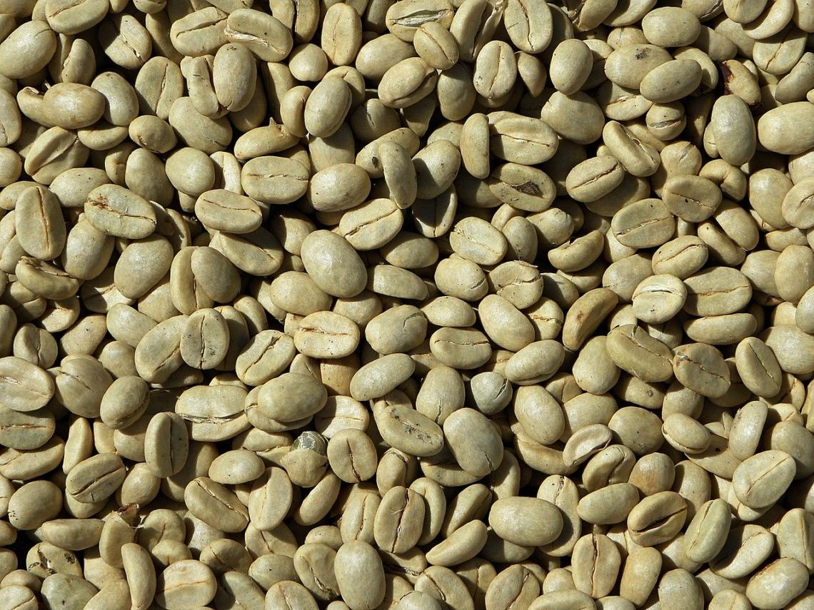 Svetol café vert