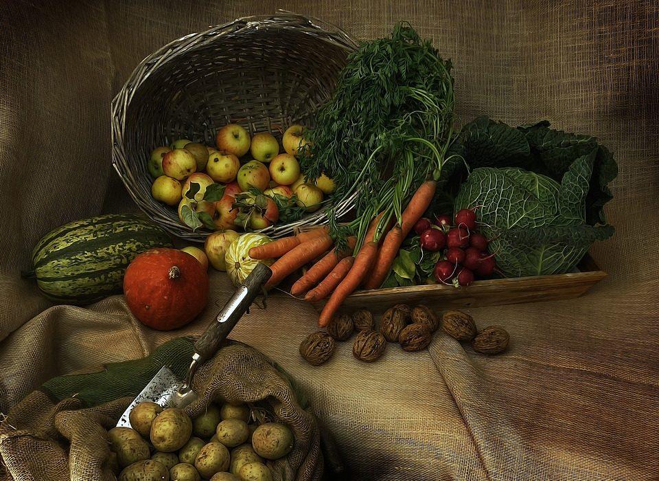 impact nutrition santé