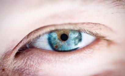 cornée oeil
