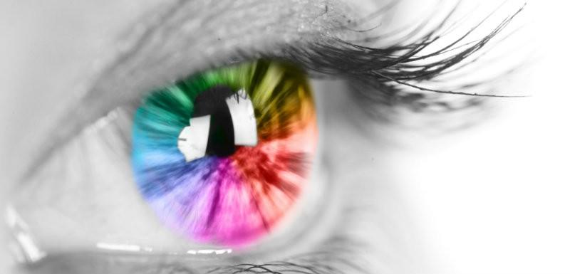 Etudier les iris des yeux