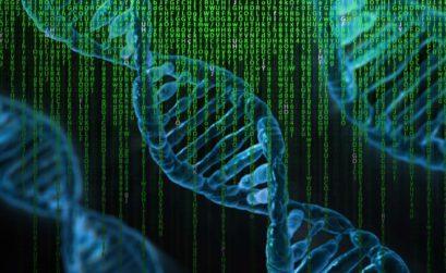 faire un test ADN récréatif