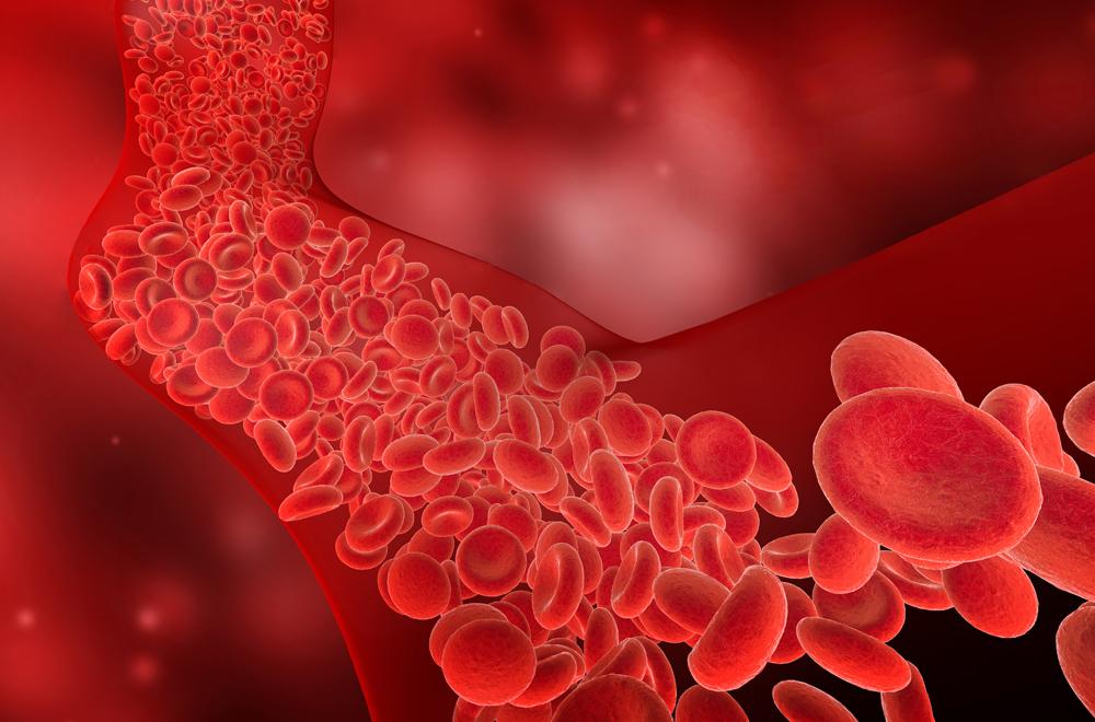 Matelas et circulation sanguine