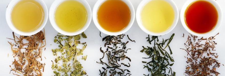 Thé et santé