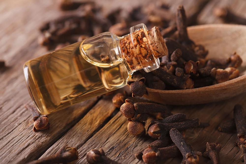 trouver les huiles essentielles