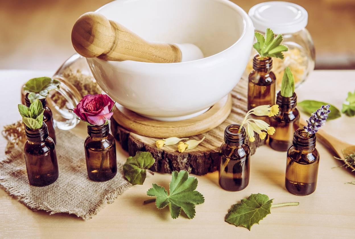 soins par les plantes, pharmacie
